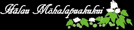 熊本のフラ教室 Halau Mohalapuakukui